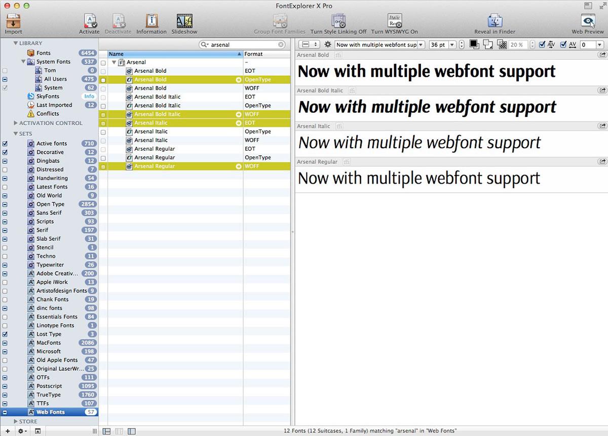 FontExplorer X Pro Webfonts