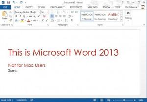 Microsoft Work 2013